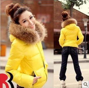 2012 Fashion Women's New Cotton-padded Coat Candy Han Style Thicken With Fur Collars Quilted Jacket 4 Color,Free Shipping