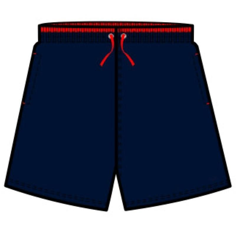 2013 fashion dark blue beach shorts(JC031)