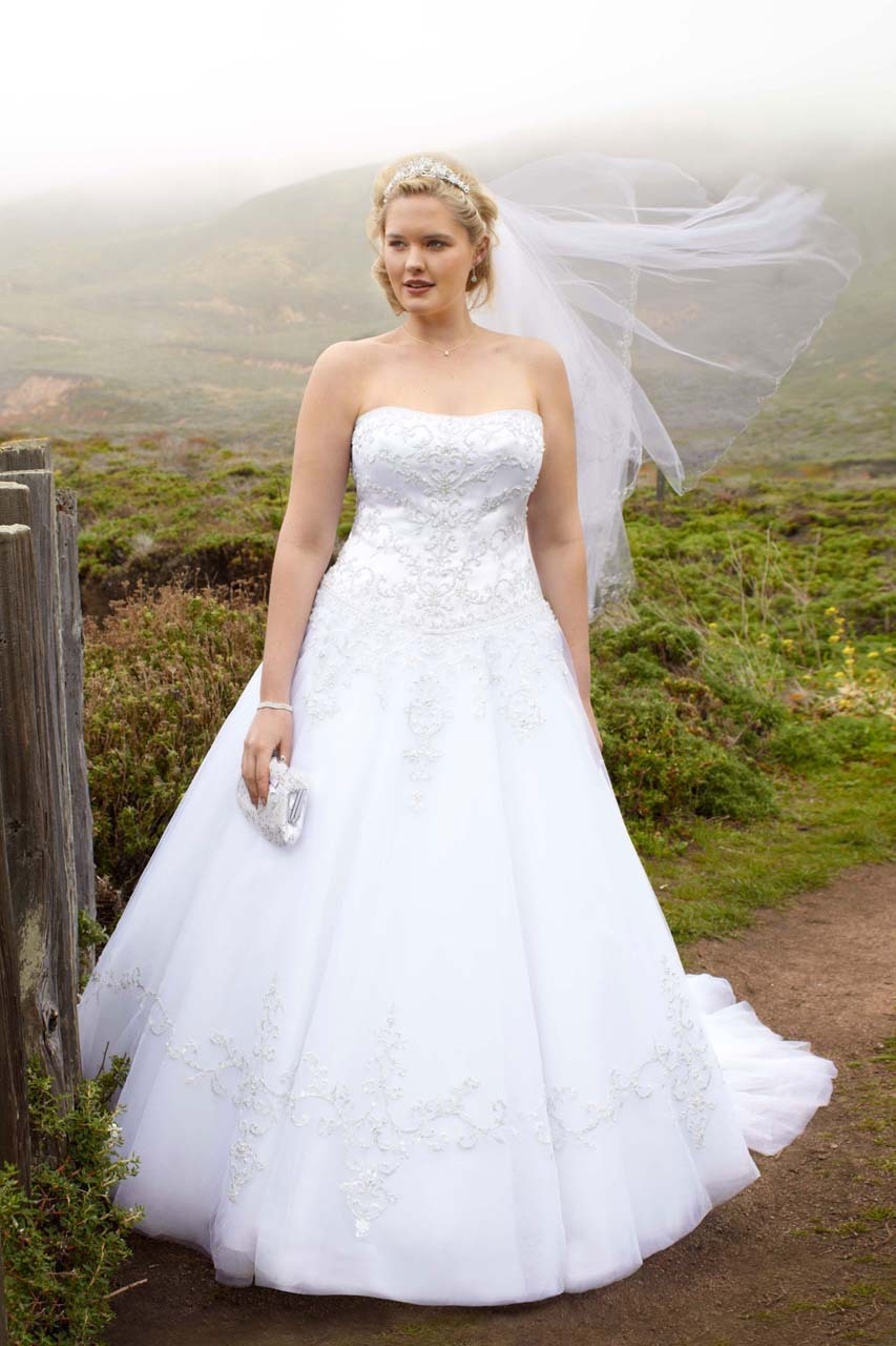 Factory David\'s Bridal Strapless Tulle Ball Gown Satin Plus Size ...