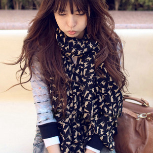 lovely small cat scarf Spring and  autumn female long design scarf, fiee shipping