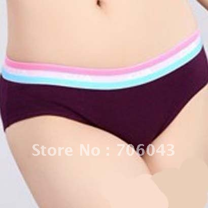 shorts2012 new products wholesale and retail moisture absorption perspiration lady triangular pants 96 G  PURPLE