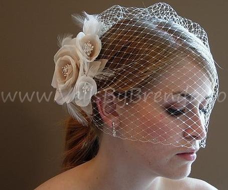 Very Beautiful Ivory Blusher Birdcage Veil, the Champagne Flower